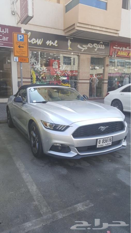 تأجير كافة انواع السيارات في دبي
