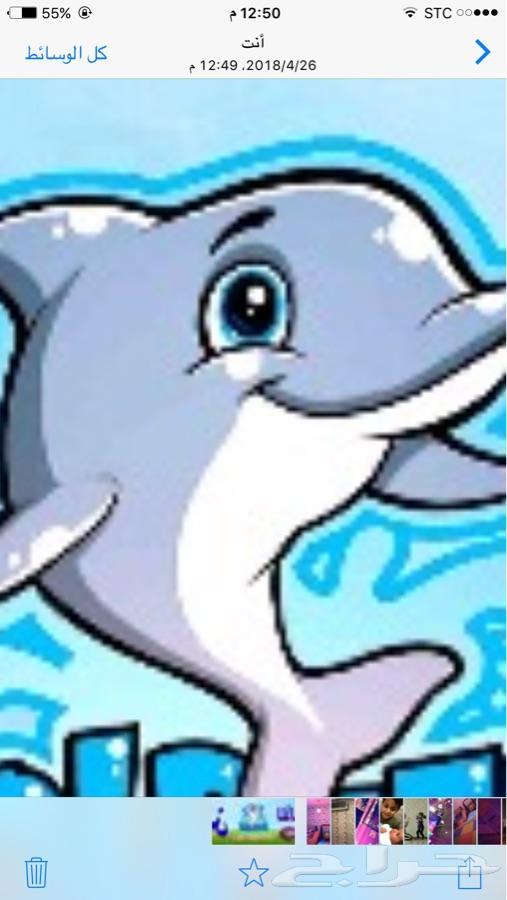 شاليهات الدلفين للألعاب المائية اهل ابكم