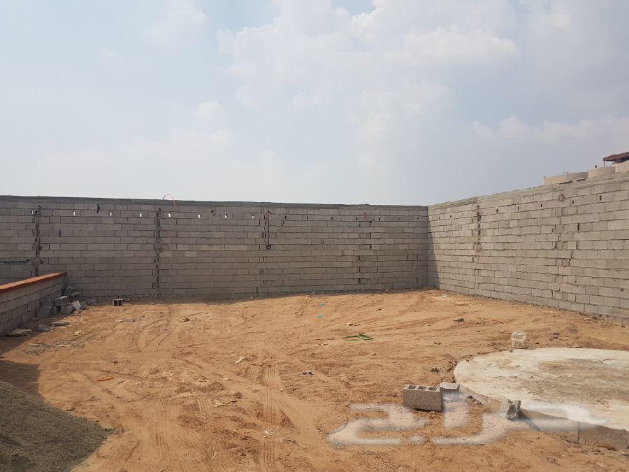 مقاول معماري عام (ابوعلي)