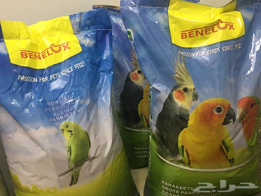 اكل كروان وطيور حب بلجيكي