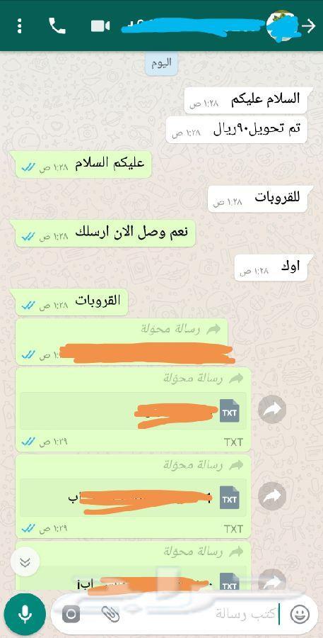 ارقام شباب مصر واتس اب