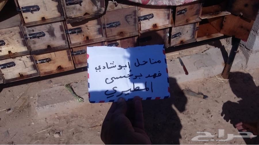 143 تقيم عسل سدر بخلطة العرسان وسدر صافي