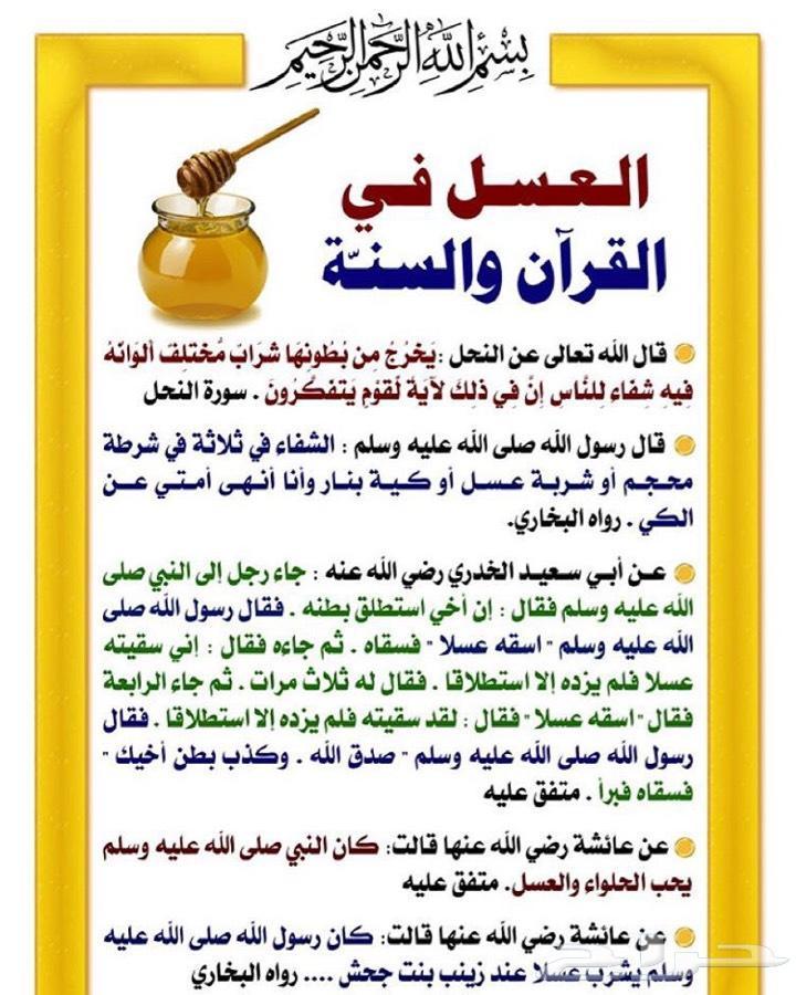 عسل سدر جبلي ( مرحبا  الف ) ذمه وامانه