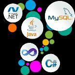 تصميم وبرمجة برامج ومشاريع حاسب آلي للطلبة