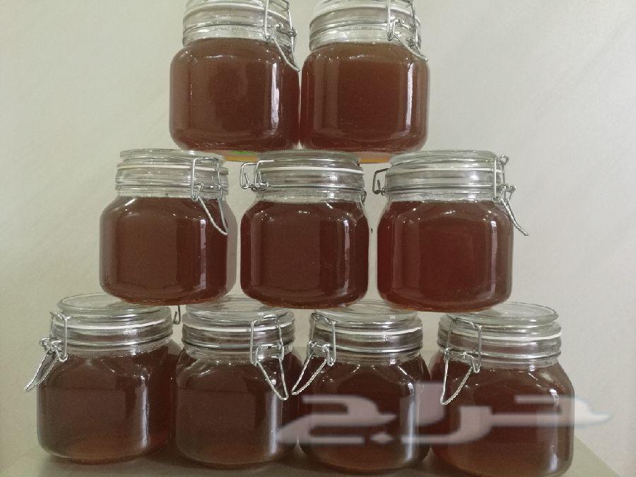 عسل سدر مضمون ومفحوص بمختبر جودة العسل