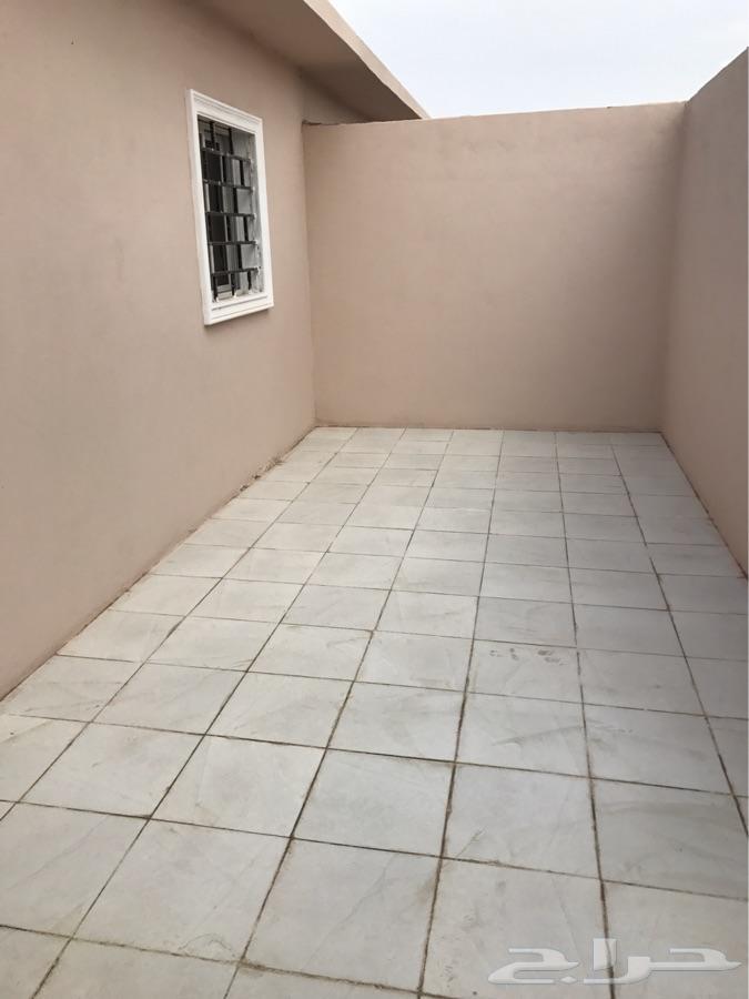 غرف ديوانيات عزاب ايجار شهري حي الالفية