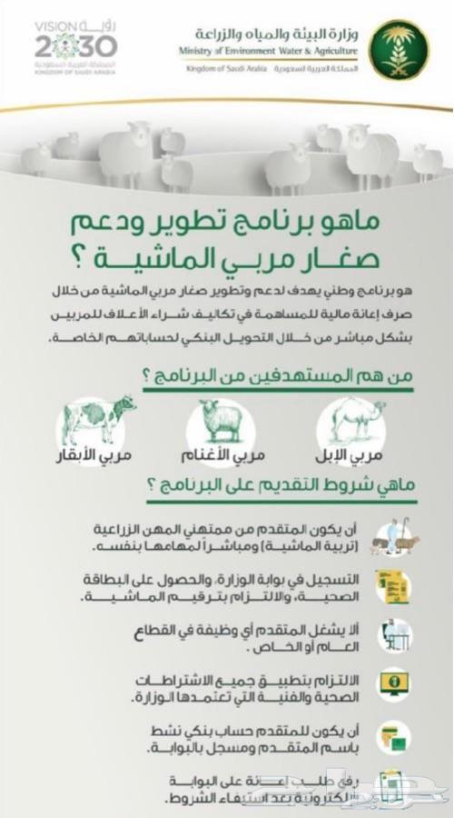Agriculture Blog تسجيل دعم مربي المواشي