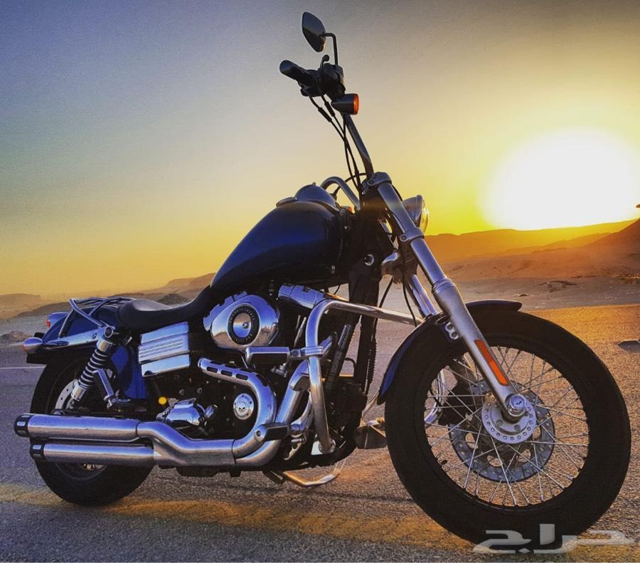 Harley  dyna هارلي داينا