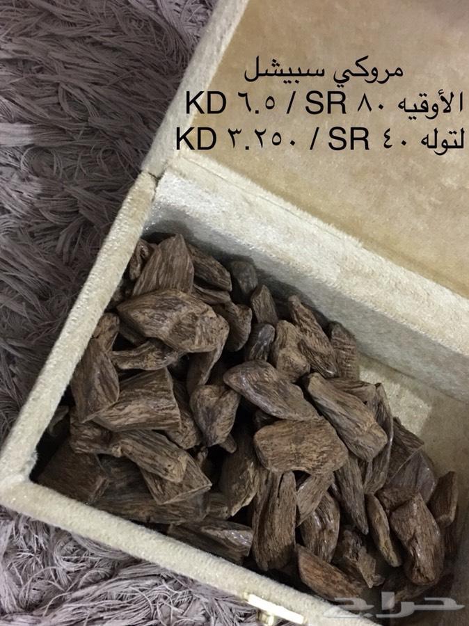 بخوور عوود مروكي كلمنتان