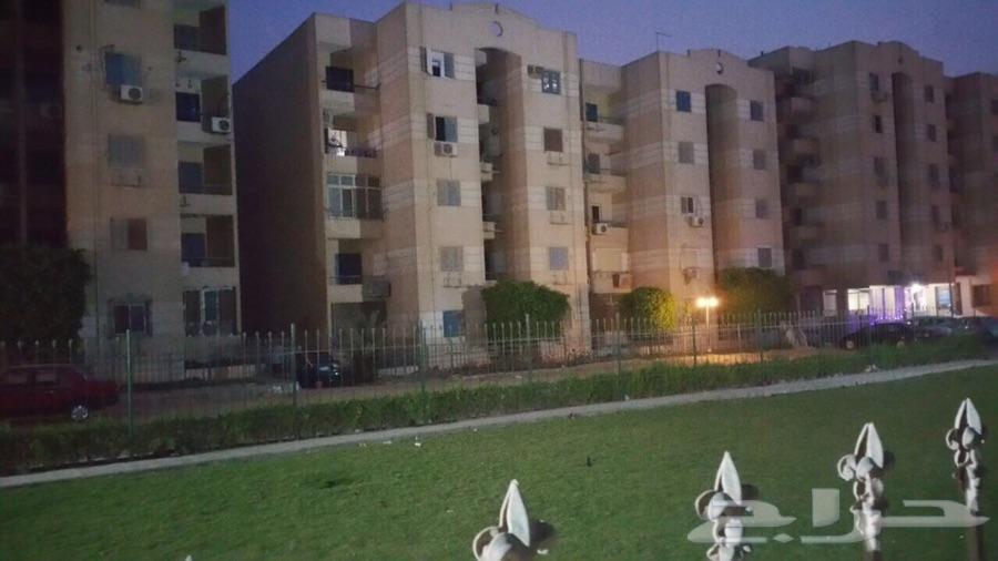 0600230e0 حراج العقار | شقه للبيع في القاهرة ( المعادي الجديدة)