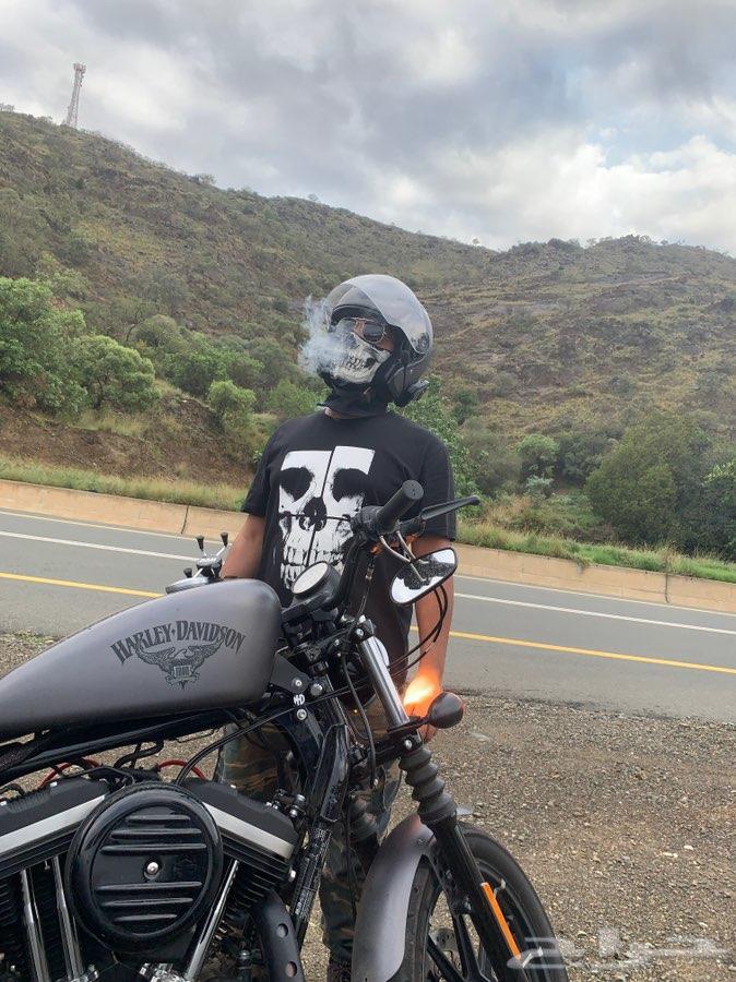 حراج السيارات   دباب هارلي - Harley Davidson Iron 883