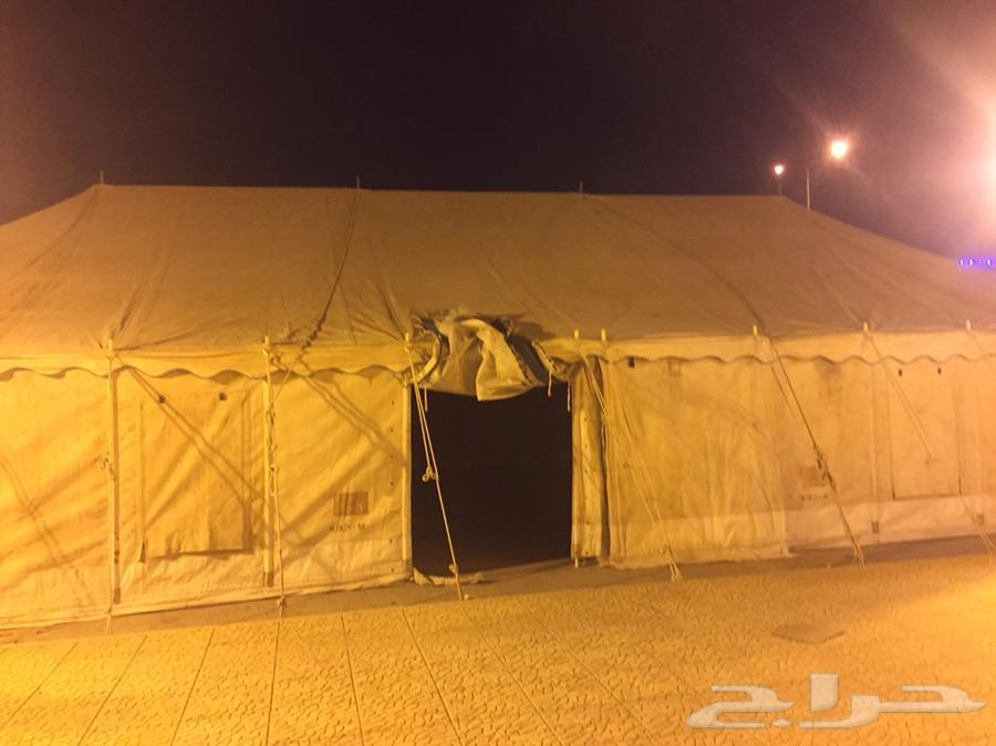 rlm الرياض