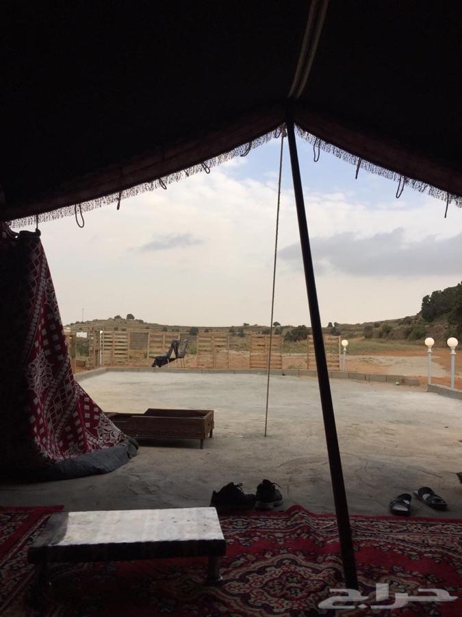 مخيم واستراحة عزاب او عائلة.