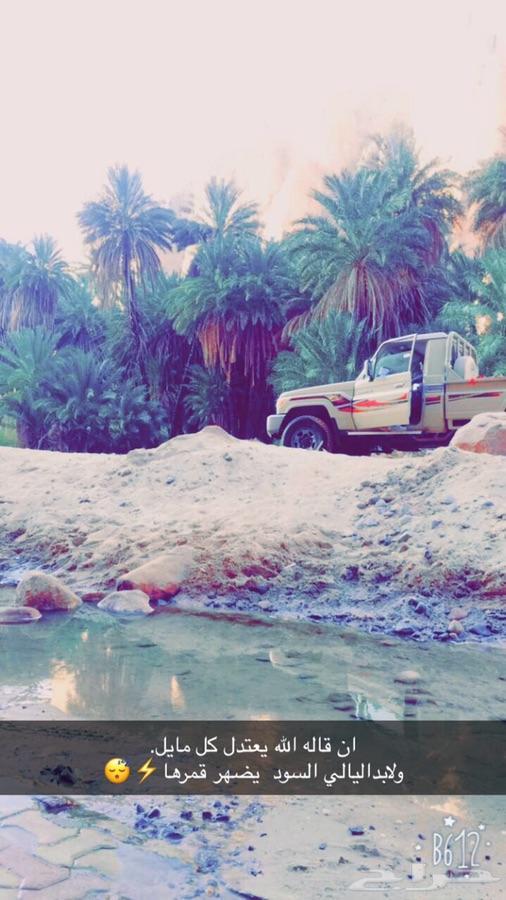 تبوك - شاص 16سعودي 11ريشه