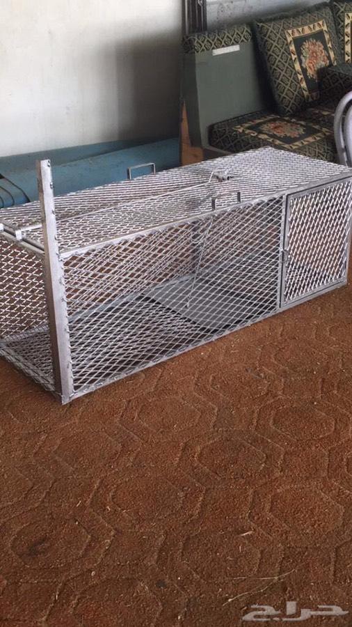 مصيده للحيوانات البريه متوفر .