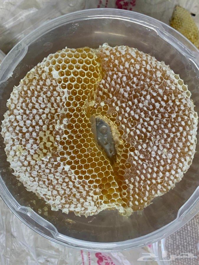 مناحل الفيصل لأجود أنواع العسل