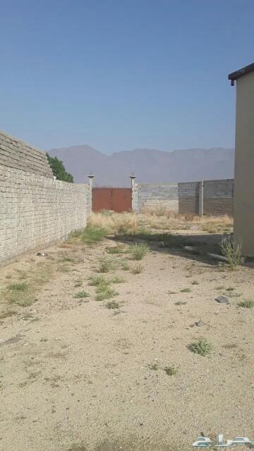 بيت للبيع  بعد الجامعه امام محطة الرمال