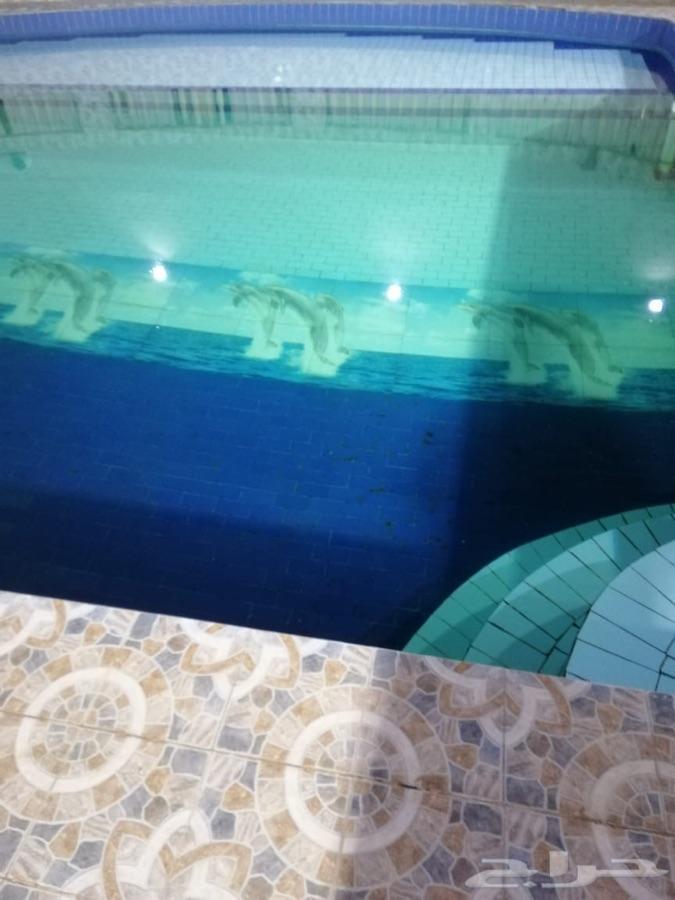 استراحة للإيجار بمزرعة بمسبح وصالة العاب