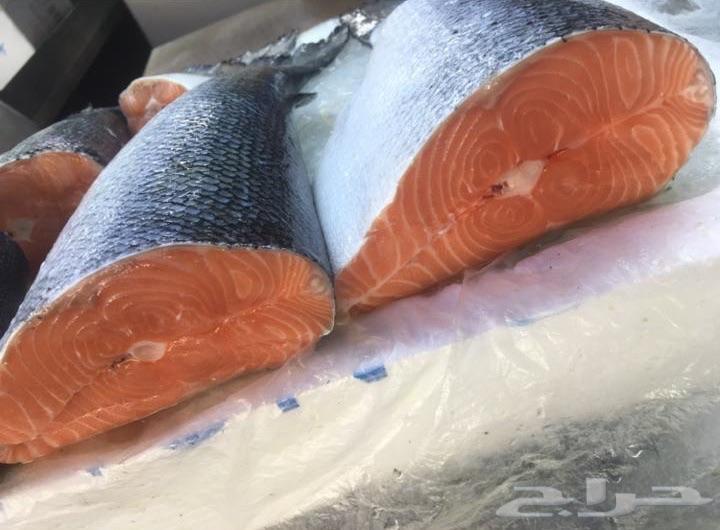 سمك سلمون نرويجي من البنقلة