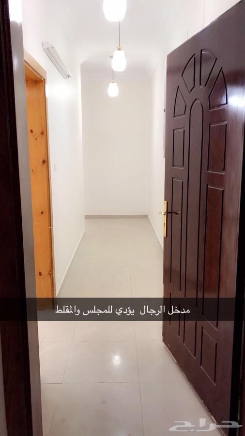شقة للإيجار