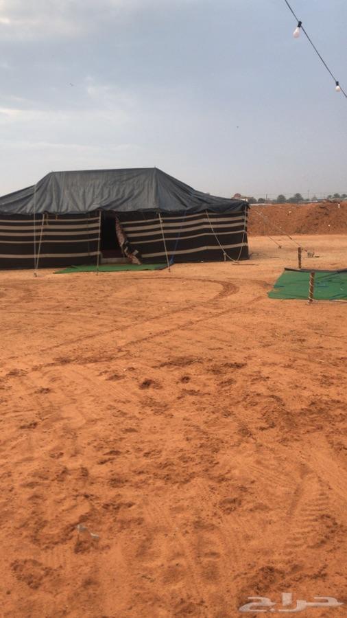 مخيم الايجار قسمين ديور العويضه