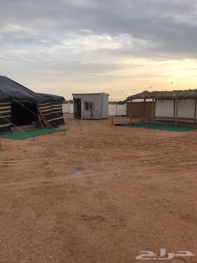 مخيم قسمين اليجار ديور العويضه