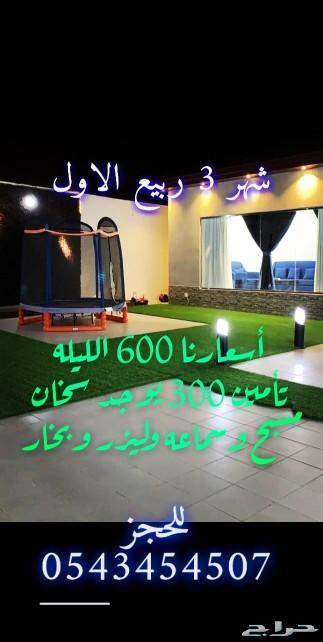 شاليه سيرين 7 الفندقي السيل الصغير