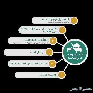 Agriculture Blog برنامج دعم صغار مربي المواشي انعام