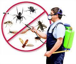 تنظيف خزانات تنظيف شقق وفلل مكافحة حشرات بجده