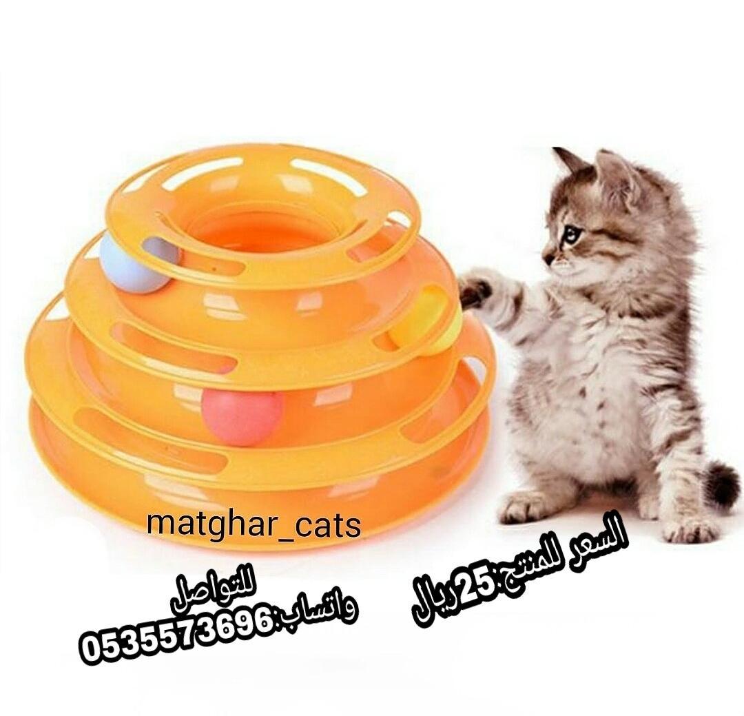 الرياض - مستلزمات قطط  كل
