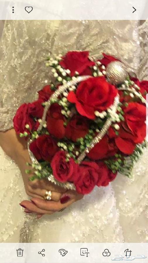 فساتين زفاف للايجار s m l xl