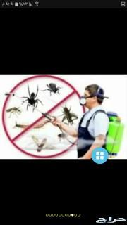 افضل شركة مكافحة الحشرات بمكه و تنظيف خزانات