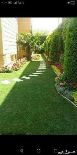مشتل الراقي للزراعة وتنسيق الحدائق