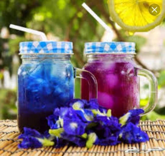 الشاي الأزرق. شاي ازرق