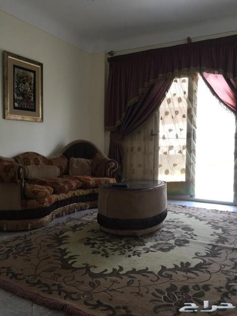 شقة للبيع مصر الأسكندرية