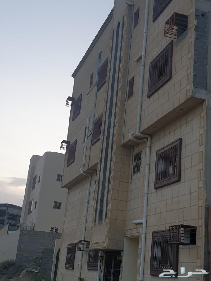 للإجار دور ارضي 7 غرف وصالتين مدخلين جديد