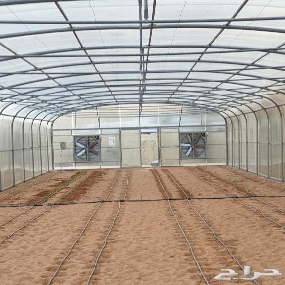 مراوح بيوت محمية زراعية و محميات منزلية