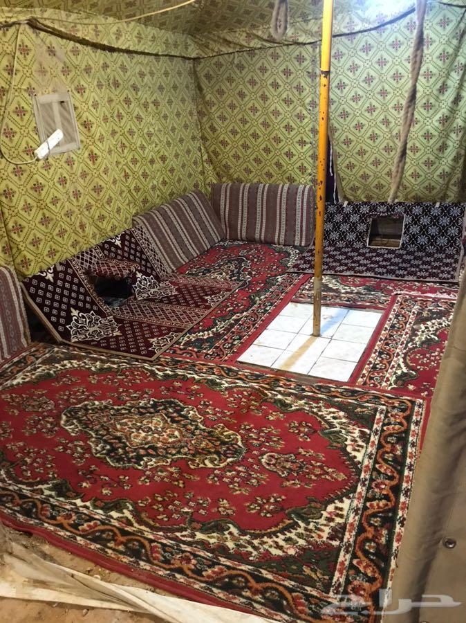 الرياض - يوجد خيام بيوت شعر مع