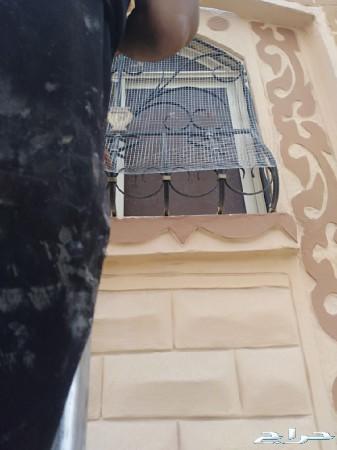 طارد الحمام مانع وقوف الطيور بالمدينة المنورة