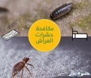 شركة رش حشرات بجده رش صراصير نمل ابيض