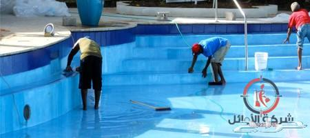 شركة تنظيف منازل شقق مكافحة حشرات كشف تسربات