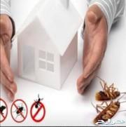 شركة مكافحة حشرات صراصيرنمل بق تعقيم تطهير رش