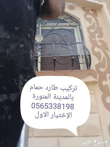 شركة تركيب اشواك طارد الحمام بالمدينة المنورة
