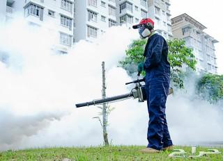 شركة رش مبيدات مكافحة حشرات بالرياض