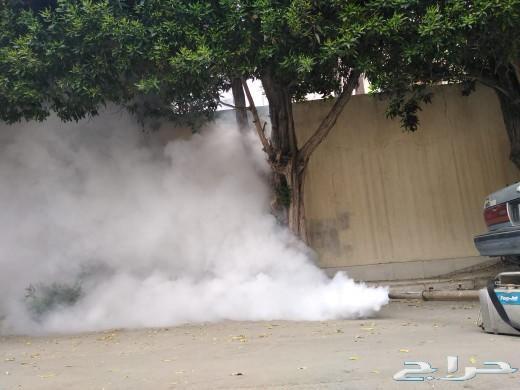 رش مبيدات مكافحة حشرات رش صراصير نمل شركة رش