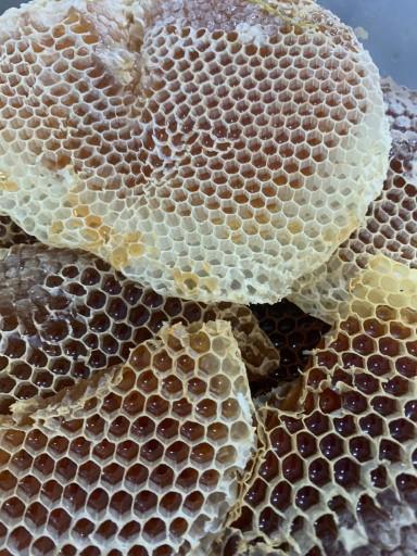 عسل سمرة إنتاج هذة السنة