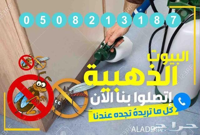 شركة مكافحة حشرات رش مبيدات بالمدينة المنورة