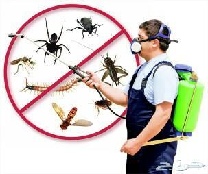 مكافحة حشرات_رش مبيدات_تنظيف مكيفات