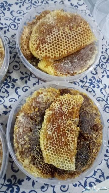 عسل طلحة طبيعي 100  100