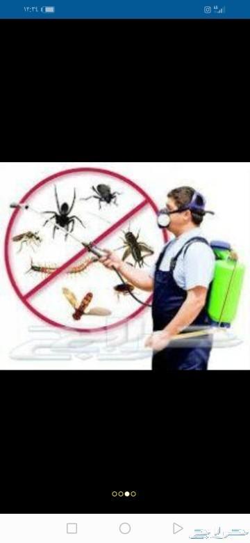 شركة مكافحه حشرات خزانات بالمدينة المنورة